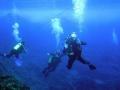 Isla de pascua buceo 13